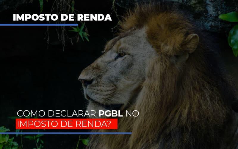 IR2020: Como Declarar PGBL No Imposto De Renda?